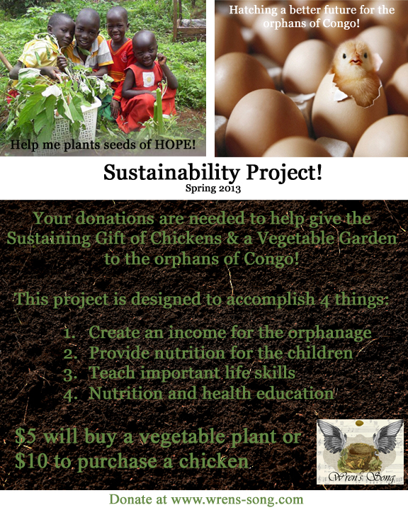 Spring 2013 – Sustainability Project for the Orphans of the Congo!